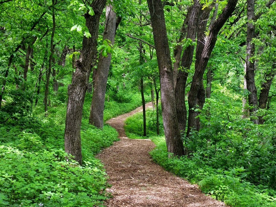 Take a Hike: Hillview Recreation Area, Hinton Iowa