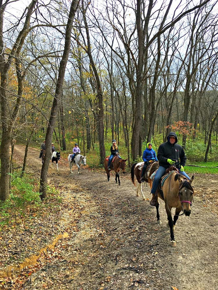 Take a Trail Ride with Westercamp Rent A Horse