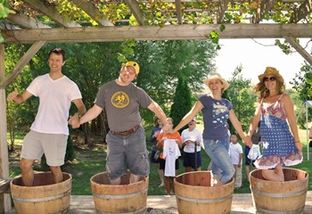 Grape Stomp at Fireside Winery