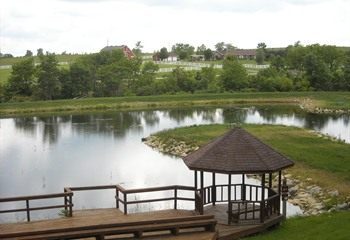 Newly Renovated Pond