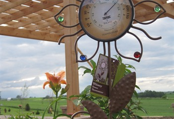 Outdoor Decor and Garden Gifts