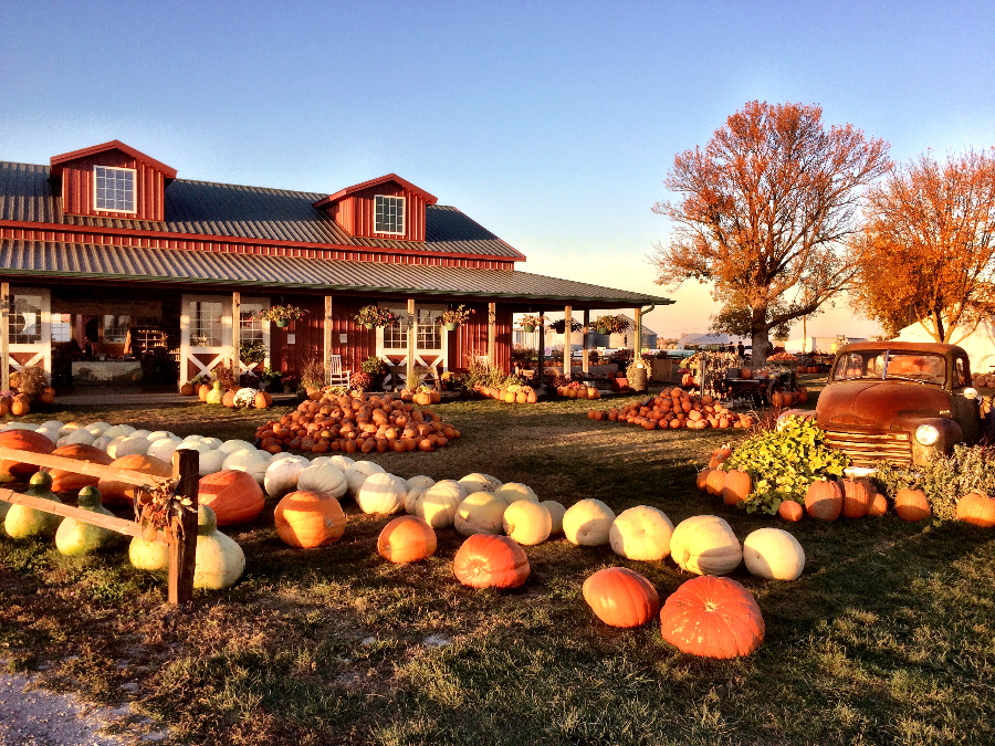 Harvestville Farm - Donnellson, Iowa | Travel Iowa | # ...