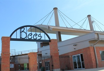 Burlington Bees Professional Baseball