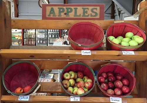 Pick Your Own Apple Orchards